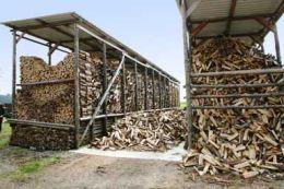 Brennholz3